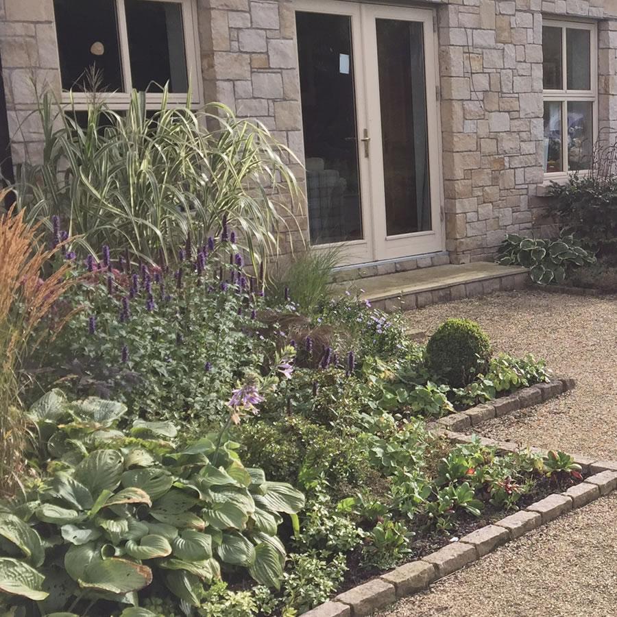 Lush Family Garden in West Dublin